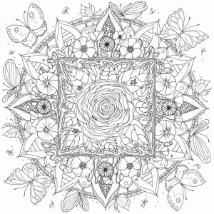 mandala-colouring-poster-flowers